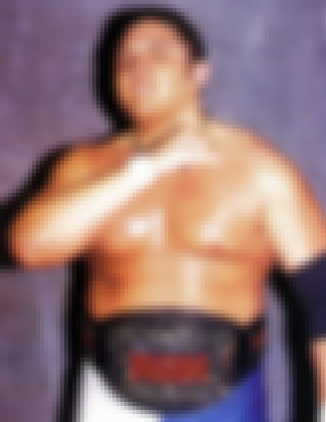 Longest Reigning Ring of Honor... is listed (or ranked) 2 on the list 5 Things You Should Know About Samoa Joe