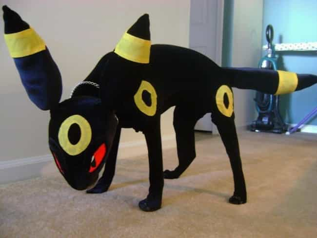 Umbreon with a Terrier I... is listed (or ranked) 3 on the list 25 Adorable Pets Cleverly Dressed as Pokemon