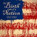 Birth of a Nation is listed (or ranked) 20 on the list Great Movies About Racism Against Black People