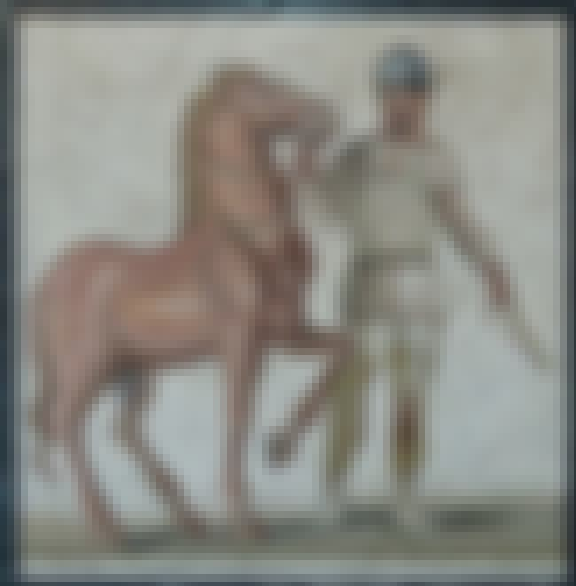 Cimon Coalemos is listed (or ranked) 9 on the list 14 Hardcore Ancient Olympic Athletes Who Would Easily Smoke Modern Athletes