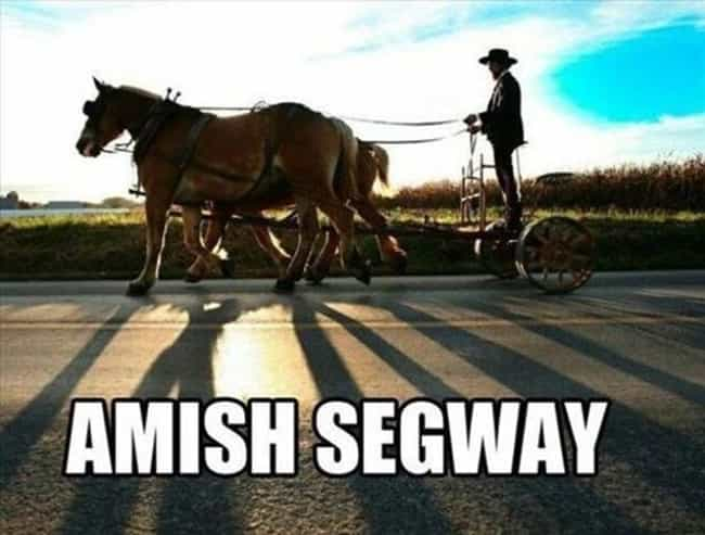 Every Which Way But Amish is listed (or ranked) 3 on the list 25 Ridiculous Pictures Of Amish People Doing Normal Things