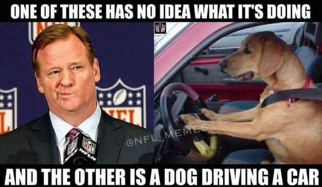A Moment Of Paws is listed (or ranked) 3 on the list The 23 Funniest NFL Memes That Are Way Too True