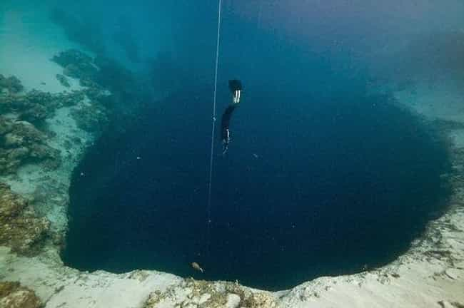 They Might Hold A Monster is listed (or ranked) 1 on the list An In-Depth Look at the Mystifying Blue Holes of the Bahamas