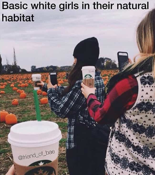Habitat For No Humanity is listed (or ranked) 1 on the list Cringeworthy Photos Of Girls Being Extremely Basic