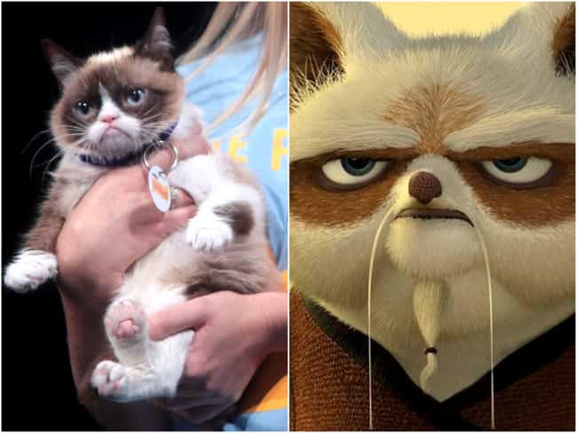 Grumpy Cat Is Master Shi... is listed (or ranked) 3 on the list 16 Animals That Look Like Famous Fictional Characters