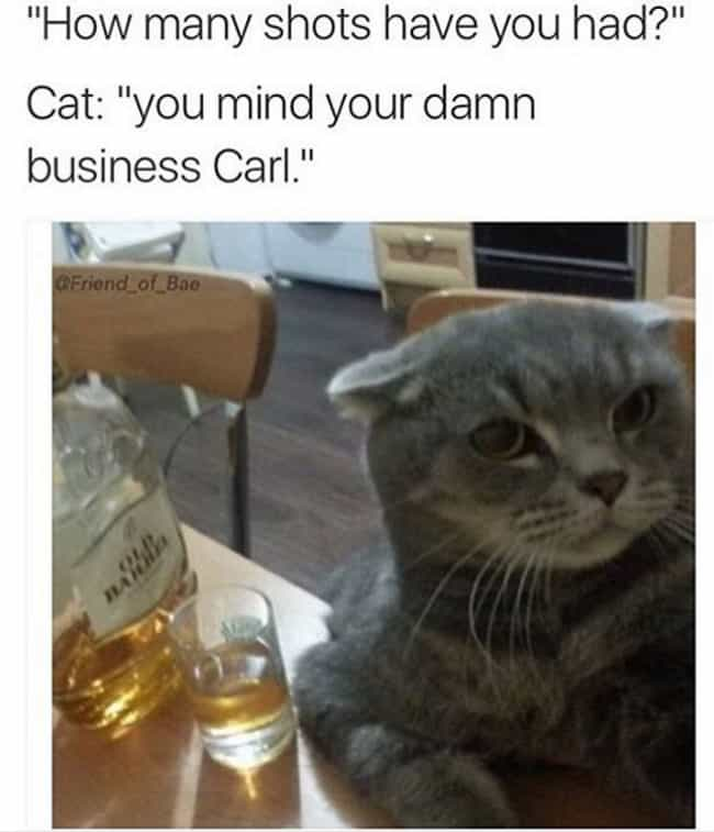 9 Lives, No F*cks is listed (or ranked) 4 on the list Funny Memes About Drinking You'll Relate To On A Deep Level
