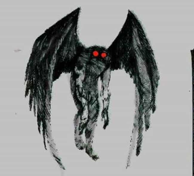 Image result for mothman