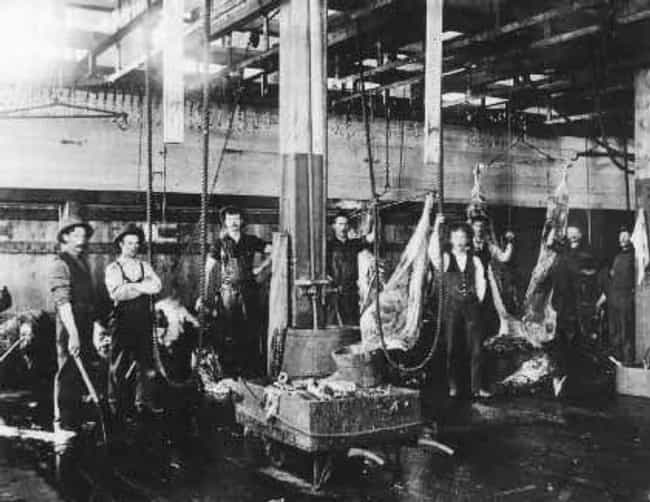 The Machines Were Deadly... is listed (or ranked) 1 on the list 12 Facts About The Nightmarish Conditions In Industrial Meat Packing Plants