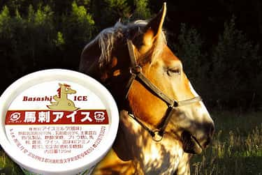 Horsemeat Ice Cream is listed (or ranked) 1 on the list The Most Disgusting Ice Cream Flavors Ever