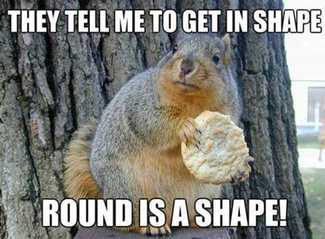 24 Hilarious Memes About Being Out Of Shape