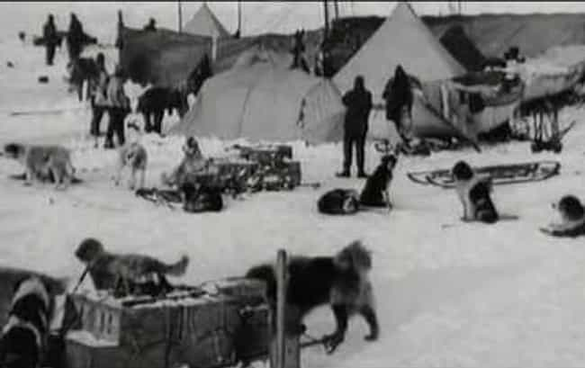 Shackleton's Men Were Fo... is listed (or ranked) 6 on the list What Happened When Shackleton Was Stranded In The Antarctic For Years?
