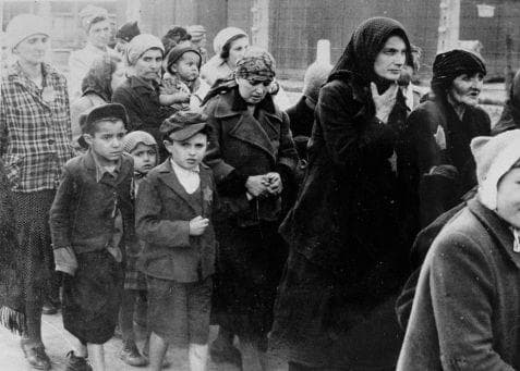 Random Stories About The Angel of Auschwitz Saved Thousands of Lives By Defying Nazis