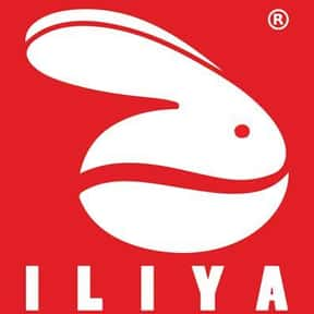 iliya Coffee is listed (or ranked) 20 on the list The Best Whole Bean Coffee Brands