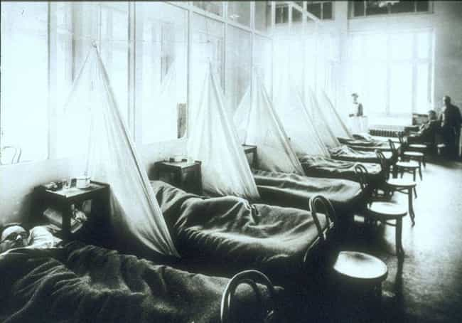 The Flu Traveled To Euro... is listed (or ranked) 4 on the list Inside The Brutal Realities of the Spanish Flu That Killed 100 Million People