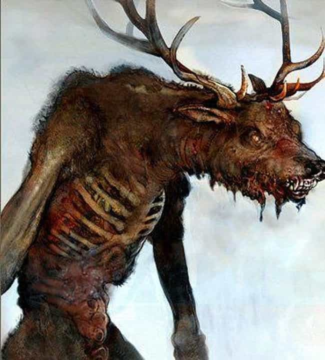 Image result for wendigo