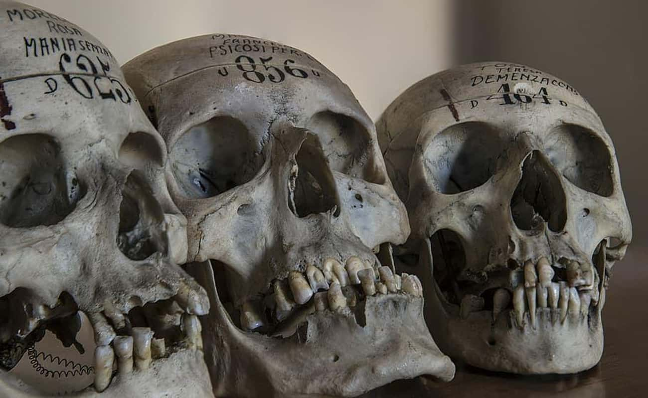 Rituals Often Involve Skulls And Other Bones