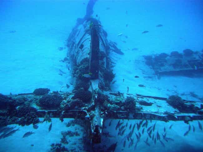 You Can Scuba Dive To Hawaii&#... is listed (or ranked) 1 on the list 10 Creepy Plane Wreckages In Remote Areas You Can Visit Today