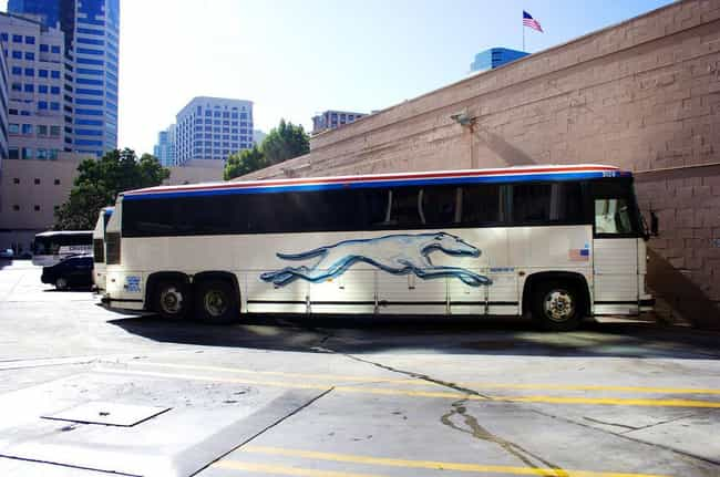 The Time A Deranged Passenger ... is listed (or ranked) 2 on the list Greyhound Bus Horror Stories That Will Make You Want To Walk Instead