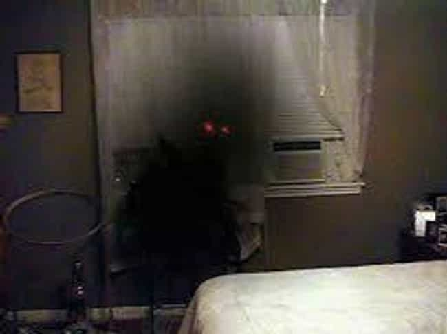 This Shadow Person Likes To St... is listed (or ranked) 14 on the list 16 Creepy Pictures That Might Contain Shadow People