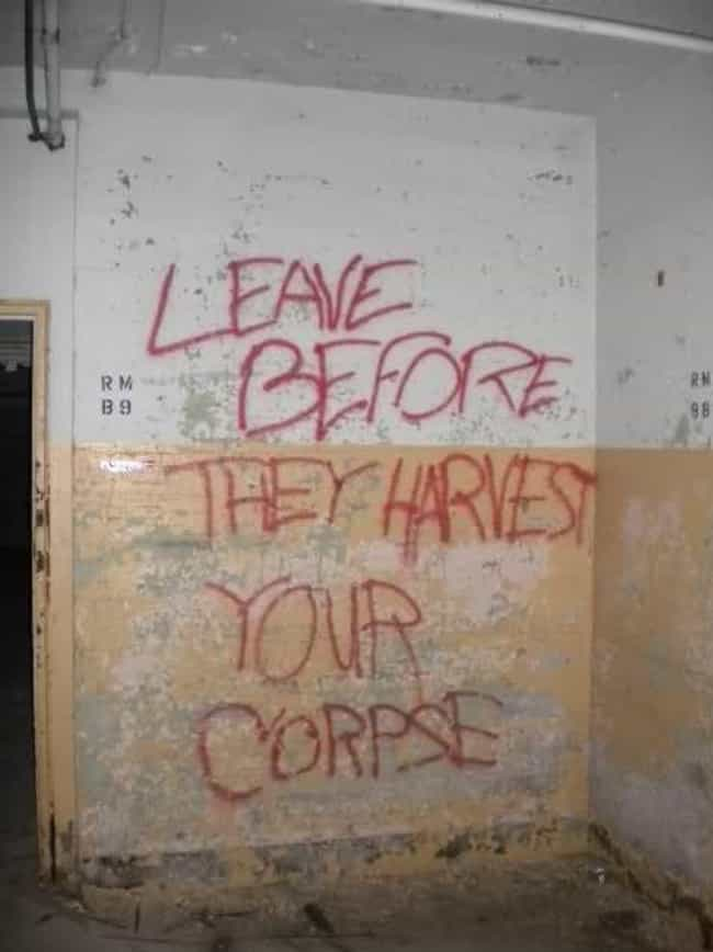 Thanks For The Heads Up ... is listed (or ranked) 4 on the list Creepy Graffiti In Abandoned Buildings That Will Haunt Your Nightmares