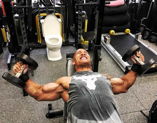 """He Put A Toilet In His Squat R... is listed (or ranked) 8 on the list 16 Times Dwayne """"The Rock"""" Johnson Was The Best"""