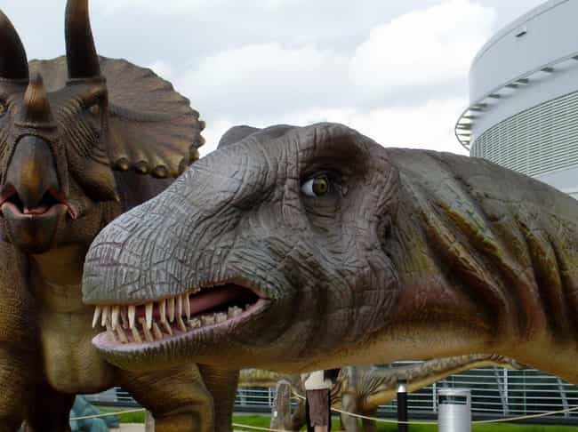 15 completely wrong facts we were taught about dinosaurs