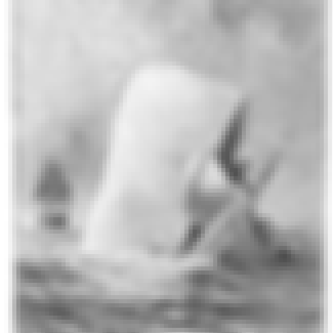 Melville's Moby Dick Was B... is listed (or ranked) 1 on the list 12 Brutal Facts That Prove Whaling Was One of the Worst Industries Ever