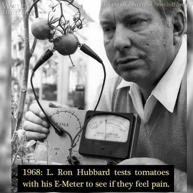 1968: L Ron Hubbard And His E-... is listed (or ranked) 1 on the list Photos Of Horrible People From History Being Their Horrible Selves