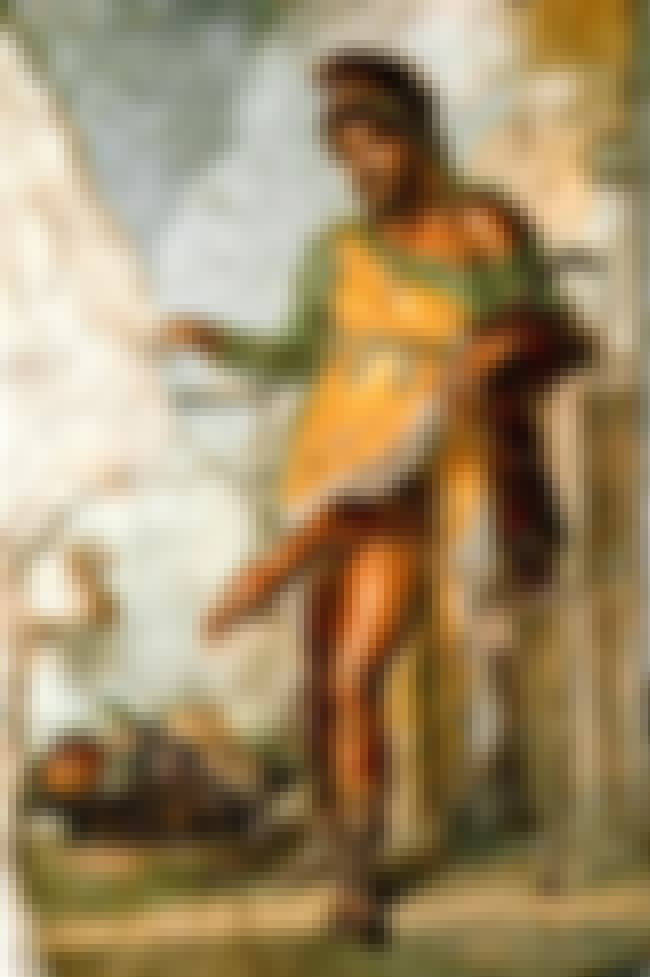 The Poems Of The Priapeia Are ... is listed (or ranked) 8 on the list 12 Works of Sexually-Charged Literature From Ancient Rome
