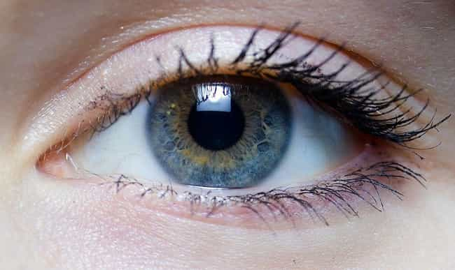 Eyes is listed (or ranked) 4 on the list 13 Things That Are Instinctively Scary To Humans (And Why)