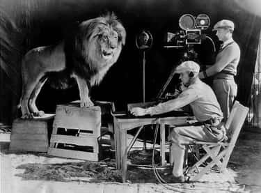 There Are Two Origin Stories O is listed (or ranked) 1 on the list The Surreal History Of The MGM Lions