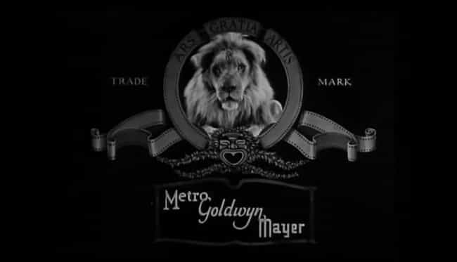 Slats Was The First Lion Masco... is listed (or ranked) 3 on the list The Surreal History Of The MGM Lions