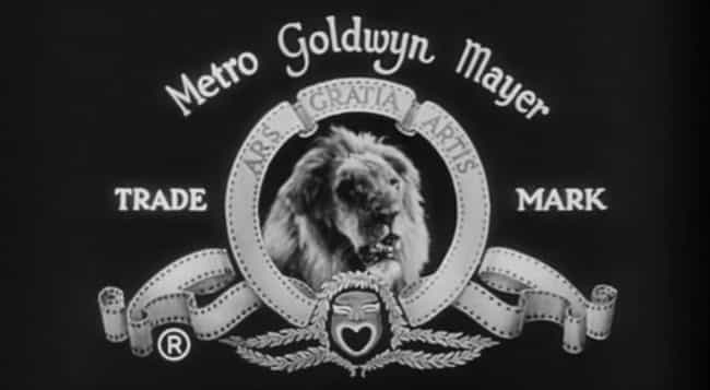 Jackie - The First MGM Lion To... is listed (or ranked) 4 on the list The Surreal History Of The MGM Lions