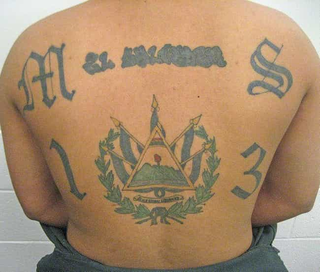 Mara Salvatrucha is listed (or ranked) 3 on the list Cartel Tattoos And The Meanings Behind Them