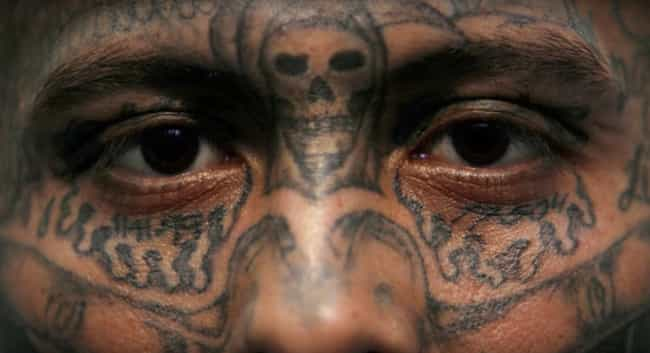 Crosses And Skulls Between The... is listed (or ranked) 1 on the list Cartel Tattoos And The Meanings Behind Them