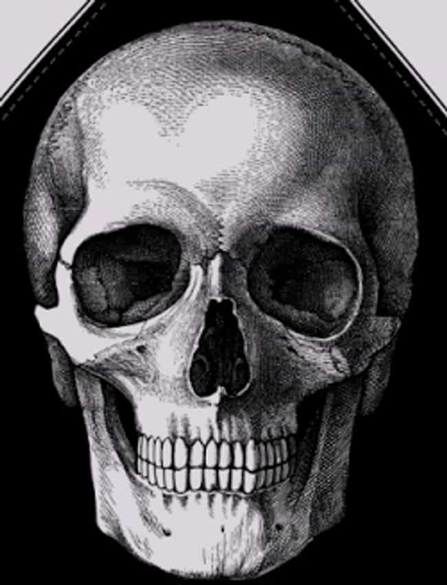 Crosses And Skulls Betwe... is listed (or ranked) 1 on the list Cartel Tattoos And The Meanings Behind Them