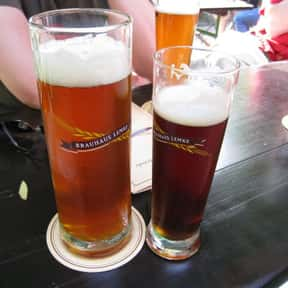 Traditional Bock is listed (or ranked) 19 on the list The Very Best Types of Beer, Ranked