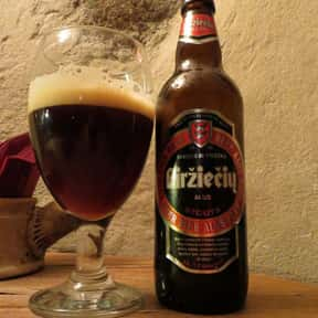 Doppelbock is listed (or ranked) 12 on the list The Very Best Types of Beer, Ranked