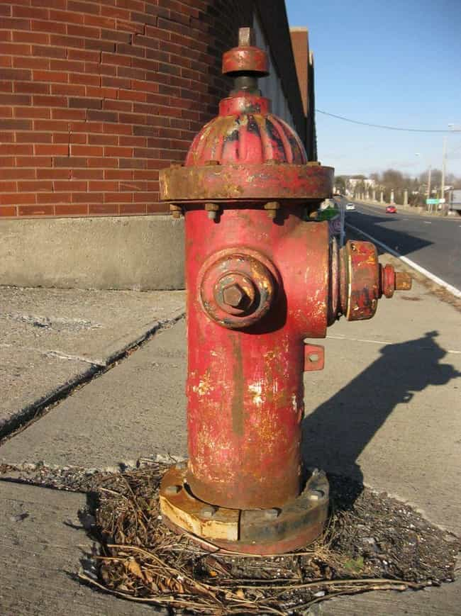 A Flying Fire Hydrant Na... is listed (or ranked) 2 on the list Fatal Freak Accidents That Befell People In The Wrong Place At The Wrong Time