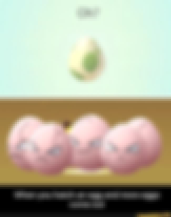 From Egg to Eggs is listed (or ranked) 3 on the list 22 Hilarious Examples Of Pokémon Logic That Make No Sense