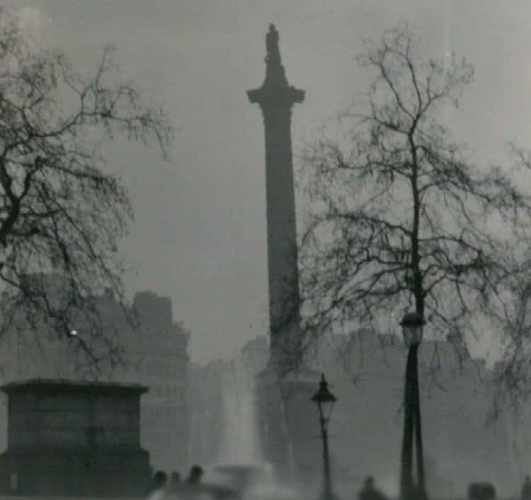 More Than 12,000 People Died As A Result Of The Fog