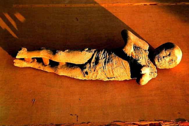 They Reveal Children Had... is listed (or ranked) 2 on the list 14 Bizarre Things Most People Don't Know About The Bodies Preserved At Pompeii