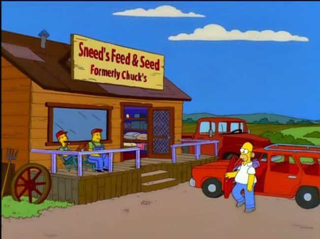 Sneed's Feed & Seed is listed (or ranked) 1 on the list Ridiculously Smart Simpsons Jokes You Haven't Been Getting for the Last 20 Years
