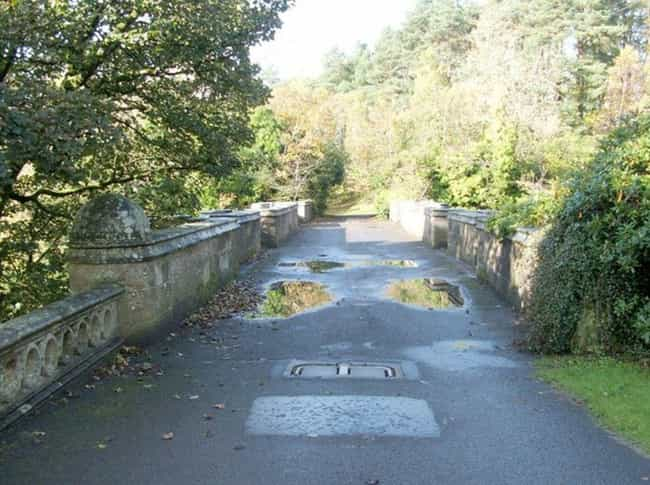 The Smell Of Mink Lures ... is listed (or ranked) 2 on the list Why Are Dogs Hurling Themselves Off The Mysterious Overtoun Bridge?