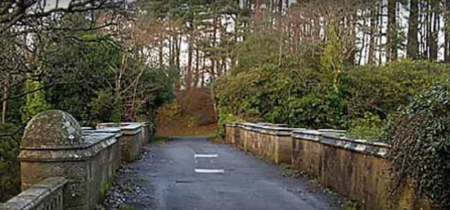 A Sound Only Dogs Can He... is listed (or ranked) 3 on the list Why Are Dogs Hurling Themselves Off The Mysterious Overtoun Bridge?