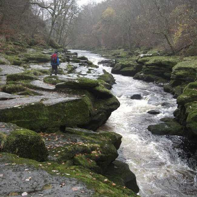 The Winding River 'Wharfe&... is listed (or ranked) 3 on the list Bolton Strid: The Stream That Swallows Anyone Who Falls In