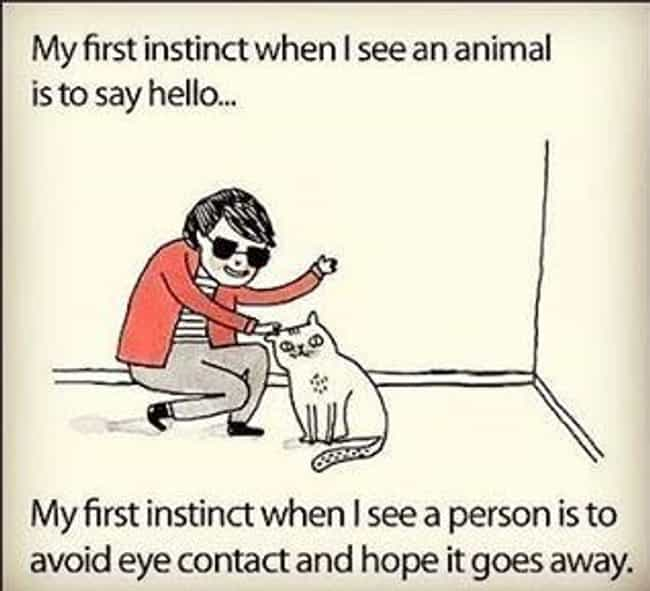 Thank God Animals Can't ... is listed (or ranked) 5 on the list Memes All Socially Awkward People Understand Too Well