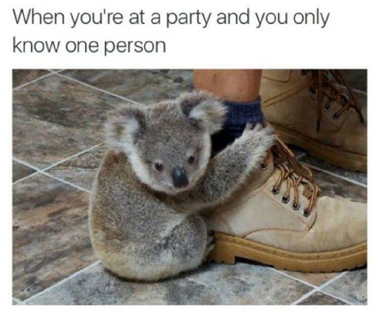 Random Memes All Socially Awkward People Understand Too Well