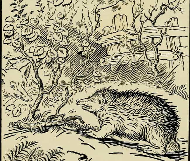 A Half-Hedgehog Boy Endu... is listed (or ranked) 7 on the list 15 Fairy Tales And Their Lesser-Known 'Horror Story' Versions