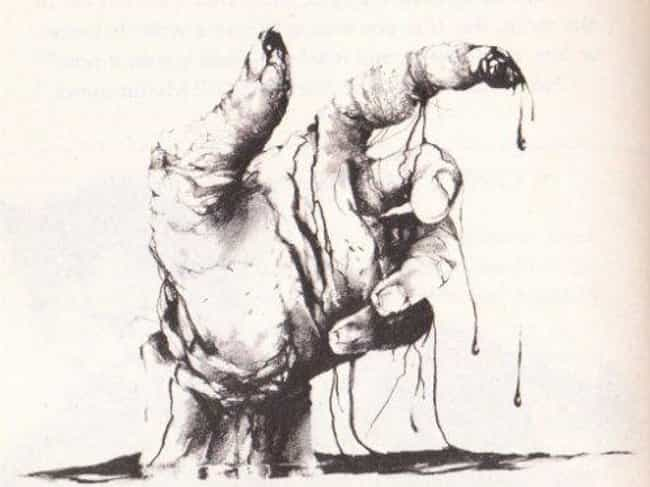 The Scariest Stories From Scary Stories To Tell In The Dark